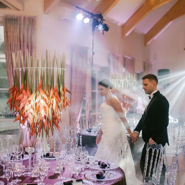 Vestuvių Šventė - Vakaro programa